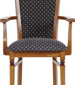 BRW Jídelní židle s područkami Bawaria TXK-DKRSII-P